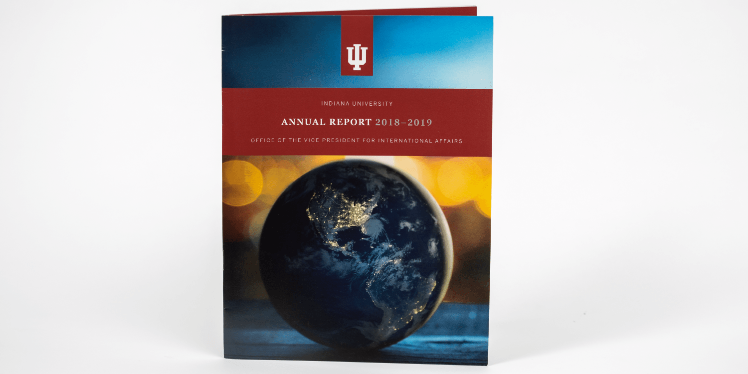 Annual Report for the Office of the Vice President for International Affairs